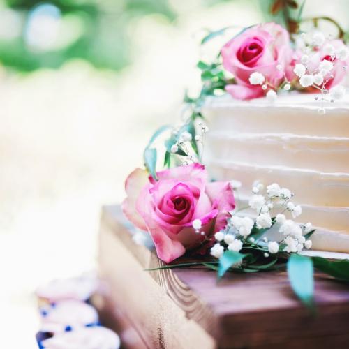 billy-alesha-grecian-center-wedding-0080