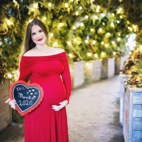 danielle-austin-maternity-detroit-session-0030