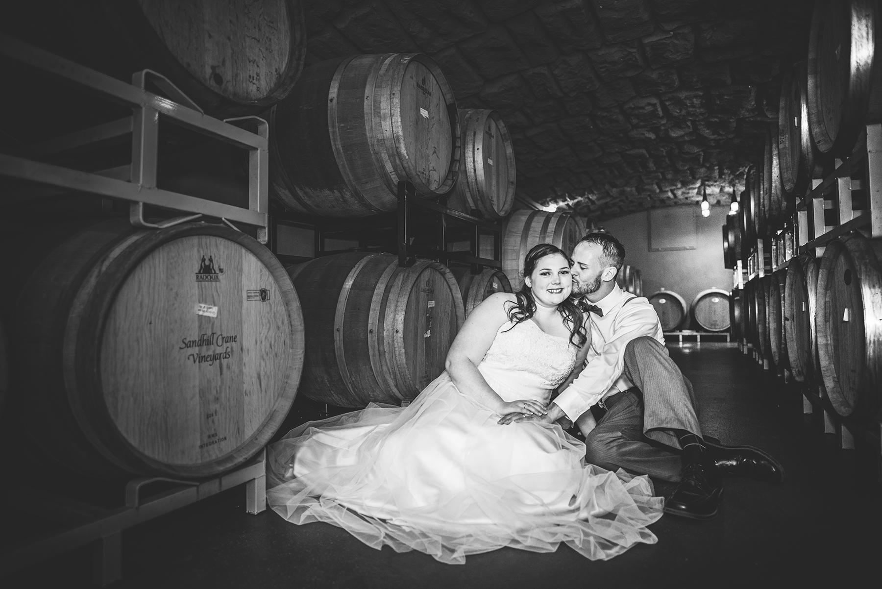 Sandhill Crane Vineyards - Jackson Michigan Wedding
